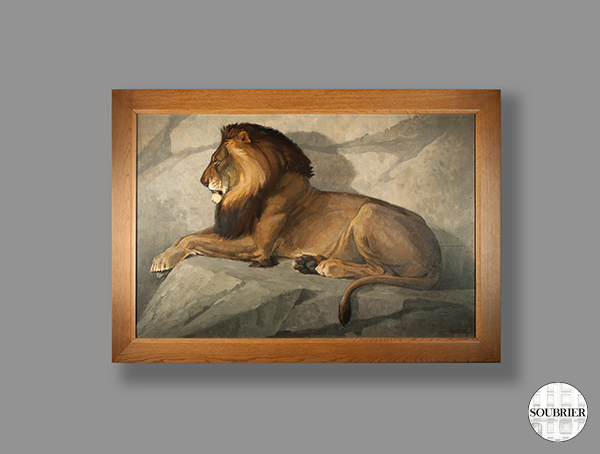 Oil of a lion lying